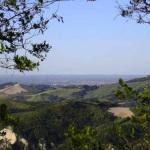 Monte Mirabello